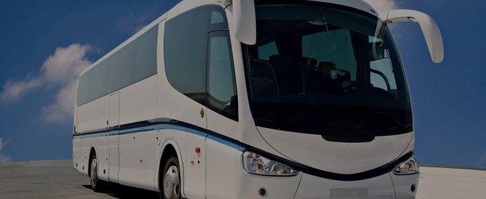 Curse autocar catre CEHIA, DANEMARCA, GERMANIA, NORVEGIA, SUEDIA si UNGARIA prin NIAD TRAVEL