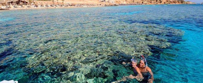 Hotel REEF OASIS BEACH RESORT 4* - Sharm El Sheik, Egipt. - Photo 14